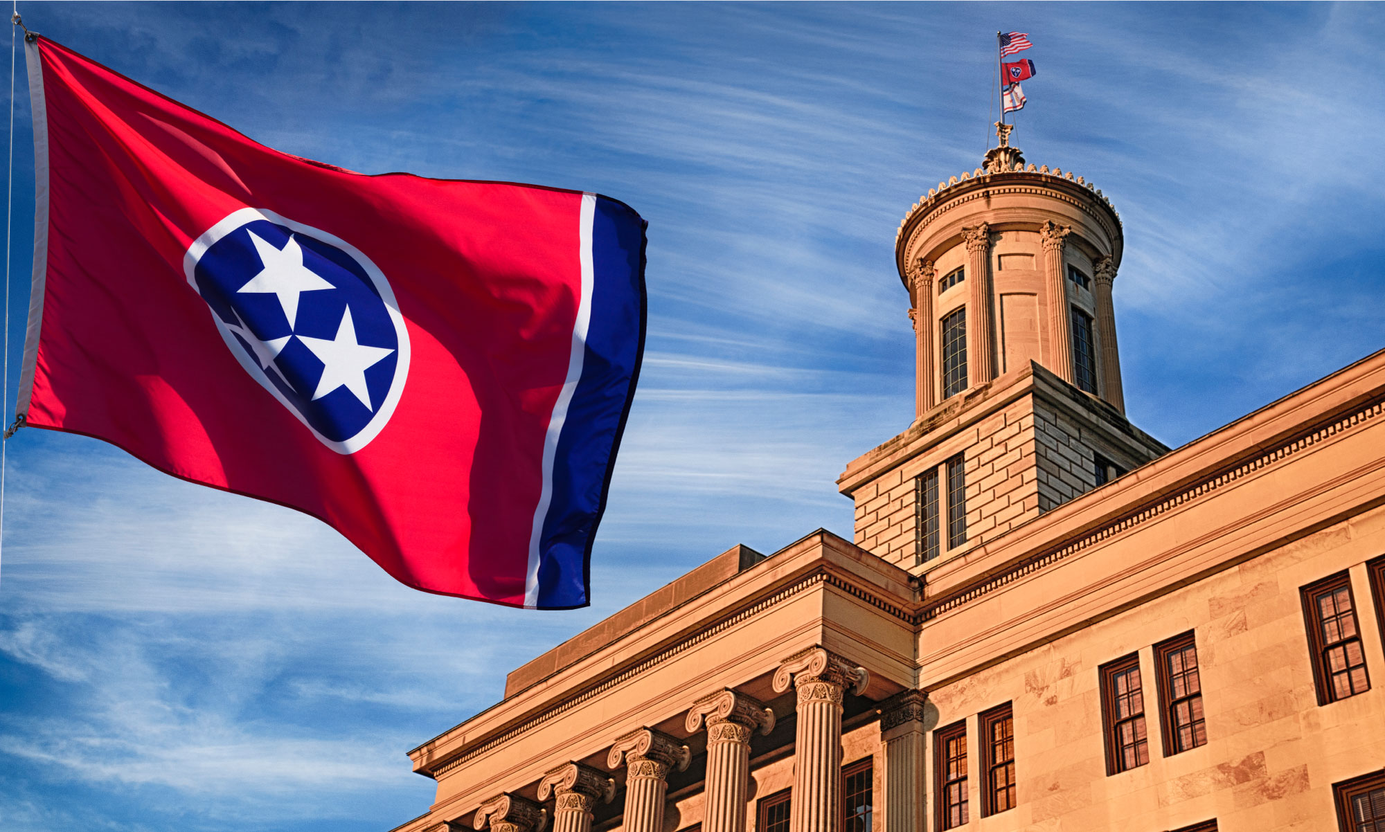 TN State Flag, government