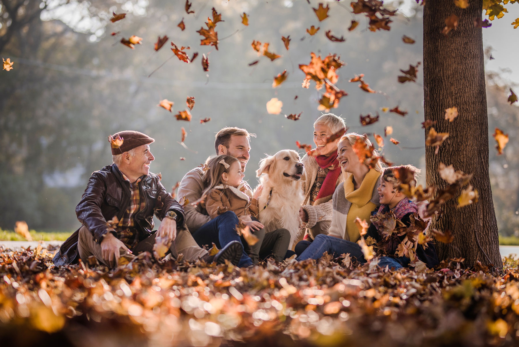 multi-generational family with dog, sitting outside, laughing in the autumn